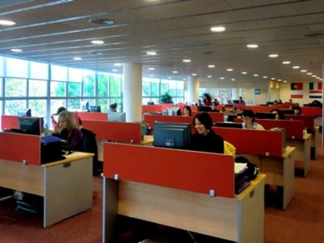 Wtransnet Oficinas